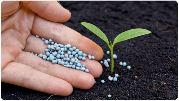 Fertilizing Services