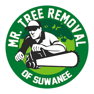 Mr Tree Removal of Suwanee